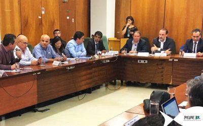 Peixe BR e associados participam de reunião no MAPA