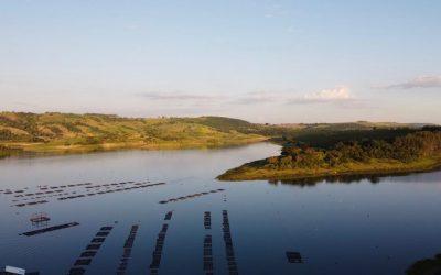 Peixe BR, Innovation Norway e FIESP promovem IV Encontro Noruega-Brasil de Aquicultura para troca de tecnologias entre os dois países
