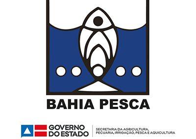 Bahia Pesca