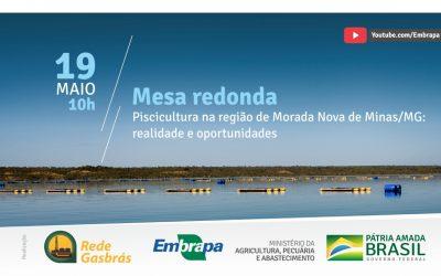 Peixe BR participa de live sobre piscicultura em Morada Nova (MG)