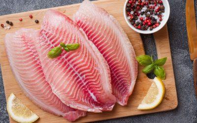 Exportações da piscicultura crescem 71% no trimestre